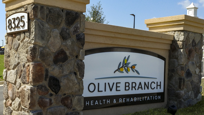 SignGeek Dimensional Letters and Logos - Olive Branch corporate identity signage with dimensional lettering