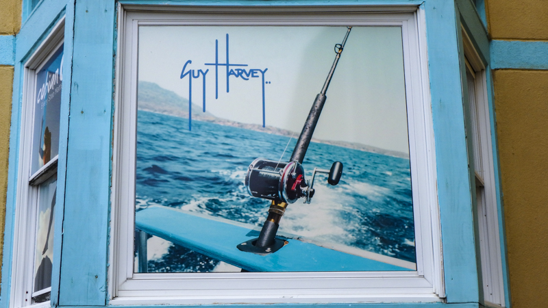 Guy Harvey window graphic for Alvin's Island on Pensacola Beach - signgeek Environmental Graphics